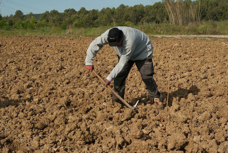 Quelles sont les exigences de l'agriculture durable?